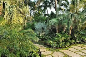 tropical landscape ideas landscape tropical with landscape miami