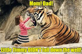 Tiger Mom Memes - lassie s gonna sit this one out tiger week a tigerlegend1046