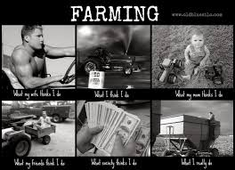 Farming Memes - old blue silo stereotypes and agriculture