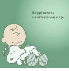 Happiness Meme - happiness is an afternoon nap meme on esmemes com
