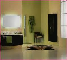 paint colors for bathrooms with white tile home design ideas