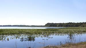 Map Of Sebring Florida by Lake Josephine Rv Resort Sun Communities Inc