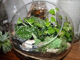 Beautiful Indoor Plants Modern Interior Decorating Ideas Incorporating Indoor Plants Into