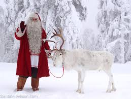 photo santa claus and a reindeer in lapland finland