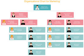 5 functional org chart templates org charting