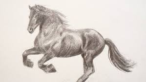 learning to draw how to draw a horse fine art tips youtube