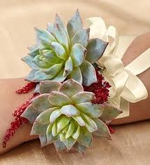 wedding flowers jacksonville fl 131 best wedding flowers images on houston bridal
