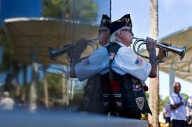 guide for veterans day events in southwest florida