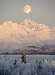 brilliant colors of denali national park alaska wallpapers 325 best alaska images on pinterest alaska usa alaska travel
