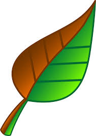 Free Green Leaves Cartoon Free Download Clip Art Free Clip Art On