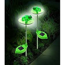 solar frog light frog solar lights led s shine through translucent