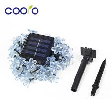 Solar Lighting Indoor by Compare Prices On Solar Flower Indoor Online Shopping Buy Low