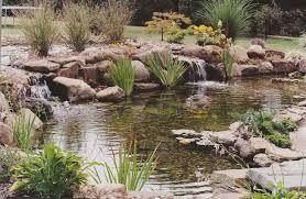 Backyard Pond Supplies by Triyae Com U003d Backyard Koi Pond Kits Various Design Inspiration