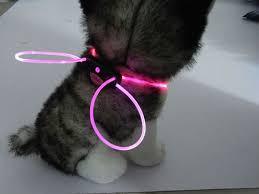 Light Up Dog Collar Diy Led Light Up Optical Fiber For Dog Collar Party Shoes Colorful