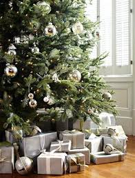 best 25 fraser fir tree ideas on