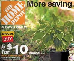 home depot quart perennials for only 2 00 4 day sale living