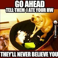Homework Meme - 56 best homework memes images on pinterest ha ha funny stuff