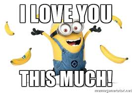 I Love You This Much Meme - 20 very sweet and funny i love you this much memes sayingimages com