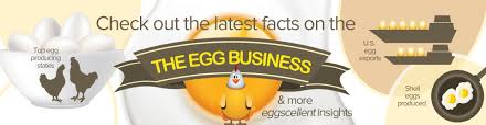 industry overview american egg board