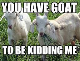 Funny Goat Memes - goat jokes things just goat serious really bad goat jokes