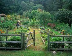 how to plan for a garden gardens garden ideas and garden fencing