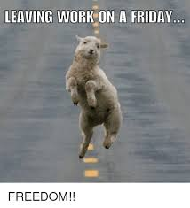Freedom Meme - leaving work on a friday freedom friday meme on me me