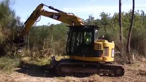rental of a cat 314d track excavator in forest clearing