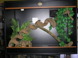 trend fish tank decorations diy 65 on home remodel ideas with fish
