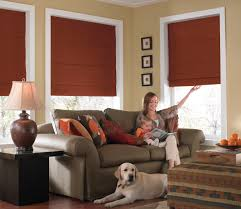 Blackout Cordless Roman Shades Phase Ii Options Phase Ii