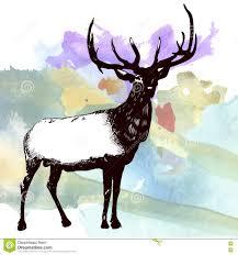 moose template deer moose watercolor painting design template vector image stock