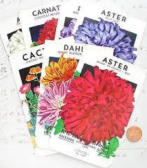 flower seed packets garden seeds seed starting timetables irvingparkgardenclub s