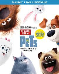 Hit The Floor Dvd - the secret life of pets dvd release date december 6 2016