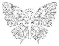 butterfly coloring pages butterfly coloring pages download free butterflies to color