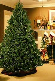 artificial prelit christmas trees 14 best fir artificial christmas trees images on