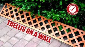 how i fit a garden trellis to a wall gosforth handyman 9 youtube
