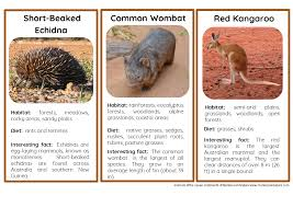 45 animals of australia and oceania nomenclature and information