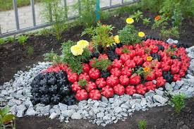 yard decoration crafts plastic bottles ideas to reuse as garden