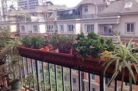 collection flower pots balcony railings photos free home