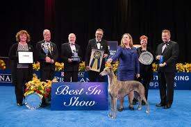 2017 national show presented by purina tickets in oaks pa