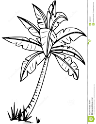 coloring pictures of a palm tree pretty palm tree coloring pages images entry level resume