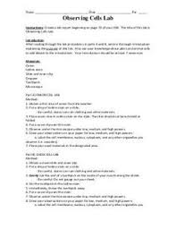 biology lab report template best 25 lab report template ideas on scientific