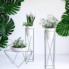 green pilaren geometric plants pinterest plants gardens and