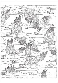 nature scene coloring pages 69 best coloring pages for adults images on pinterest