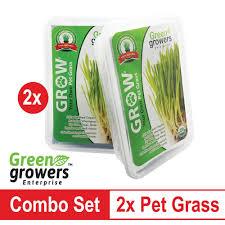 2x green growers pet grass self grow kit lazada malaysia