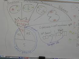 documents mr tran u0027s class page