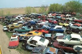 colorado mustang is this the s largest mustang junk yard stangtv