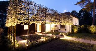 Landscape Lighting Installers Hornbeam Tree Landscape Traditional With Photography