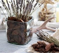 Brown Vase Fillers Orchid Bark Vase Filler Pottery Barn