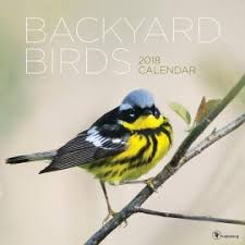 Ontario Backyard Birds The Wee Tartan Shop Shop Online Kilt Rentals Wedding Rentals