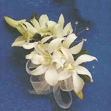Prom Wrist Corsage Ideas Orchid Corsage White Orchid Corsage Orchid Wrist Corsage